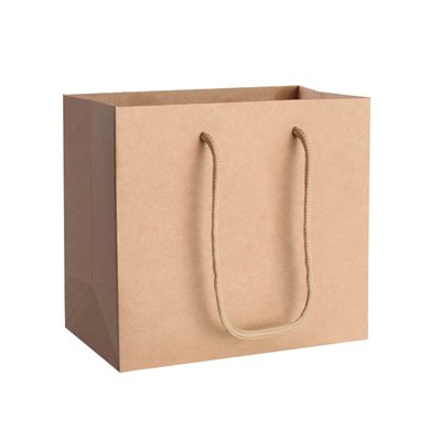 50 Brown paper bags 180x220x100mm
