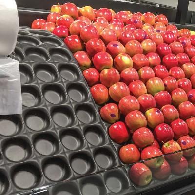 Fruit Separators VF45B